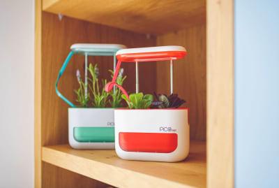 Pico Max/Kickstarter
