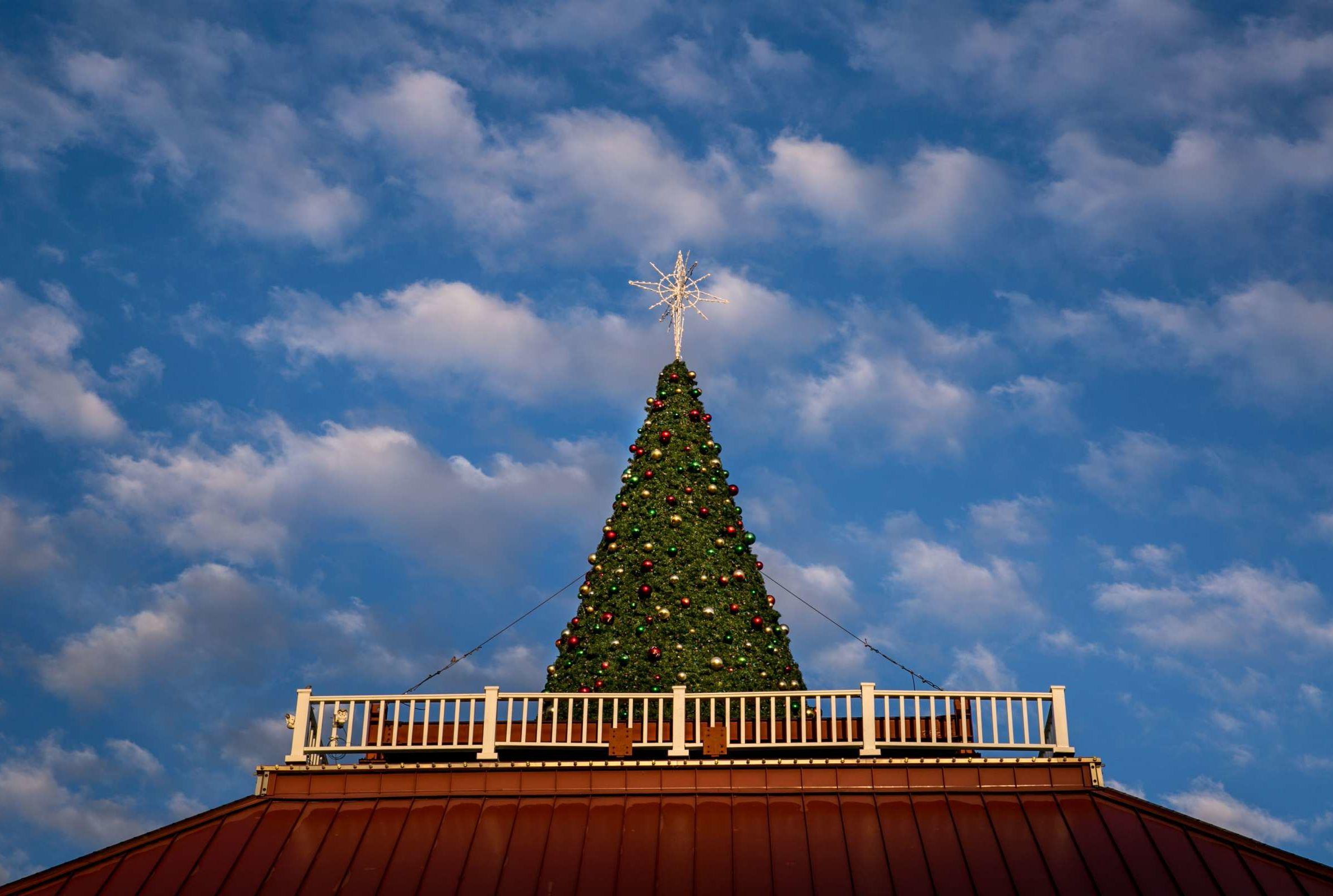 Celebrate Christmas Year-Round