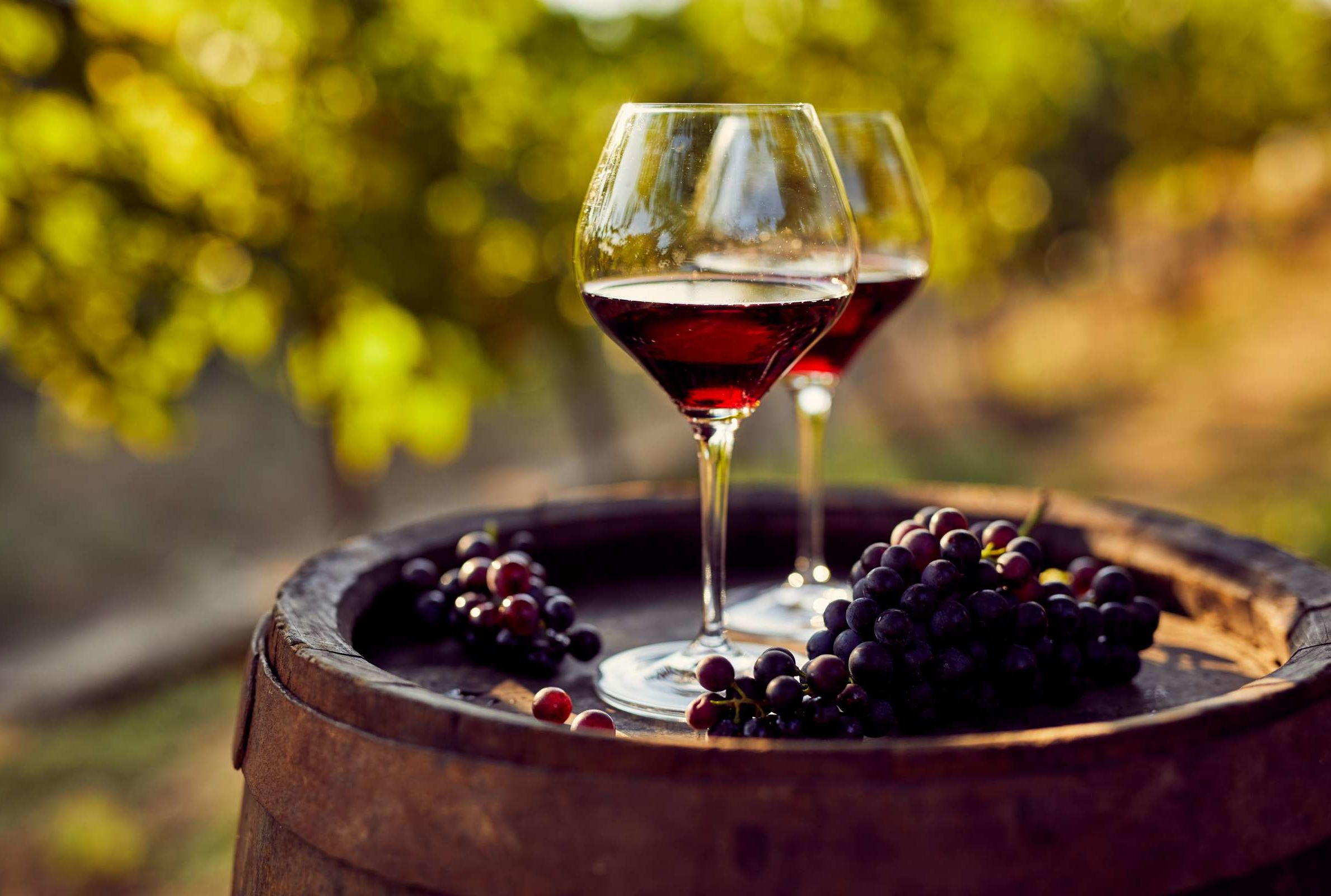 Wine Prices Drop Due To Grape Surplus Mental Floss