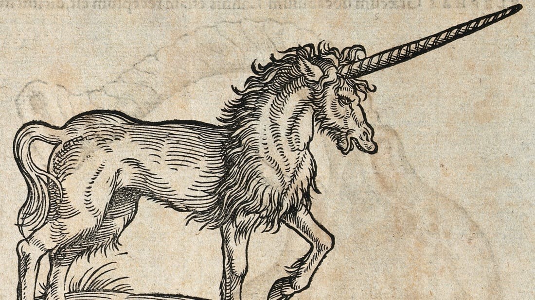 A woodcut of a unicorn from 1551