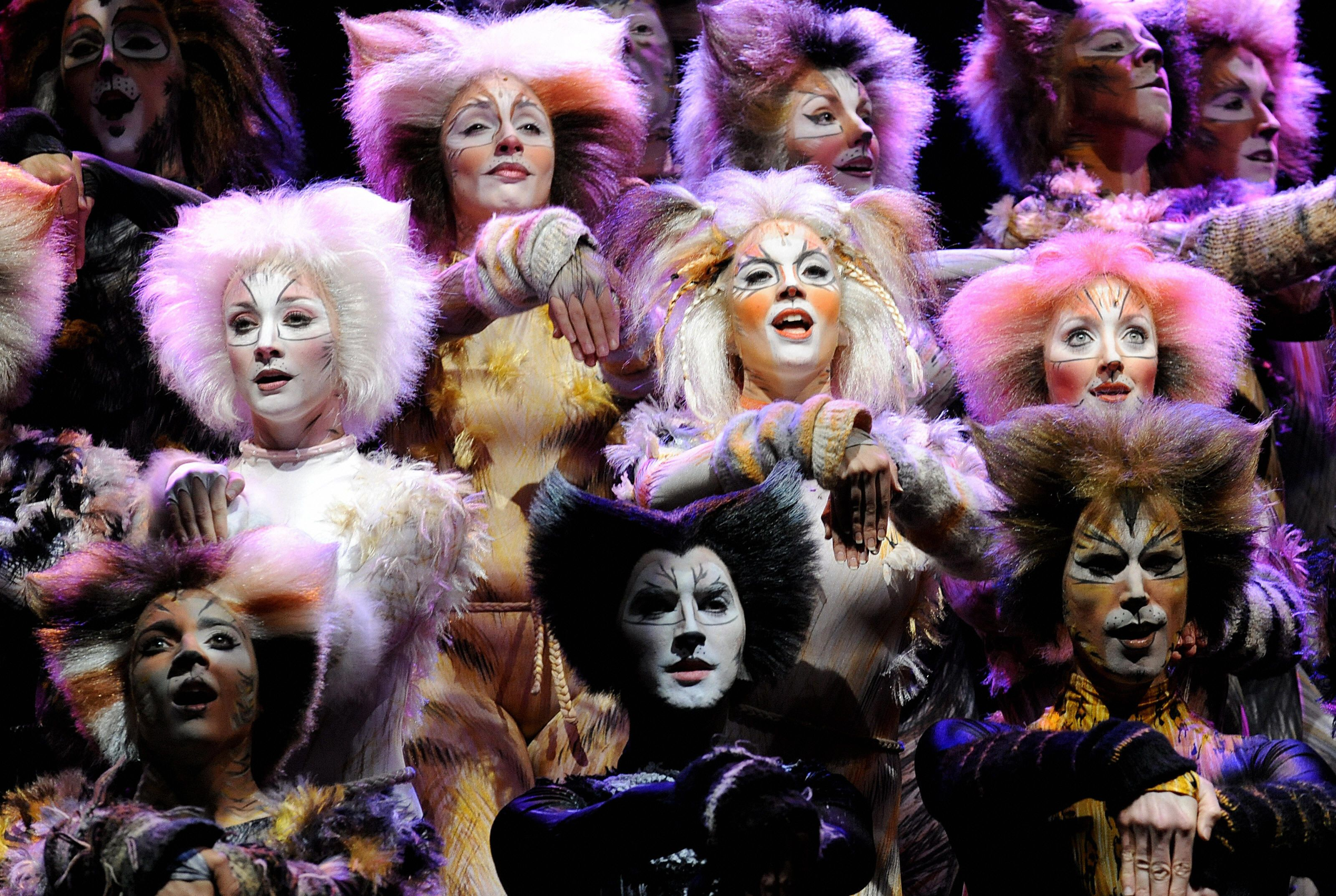 13 Memorable Facts About Cats The Musical Mental Floss