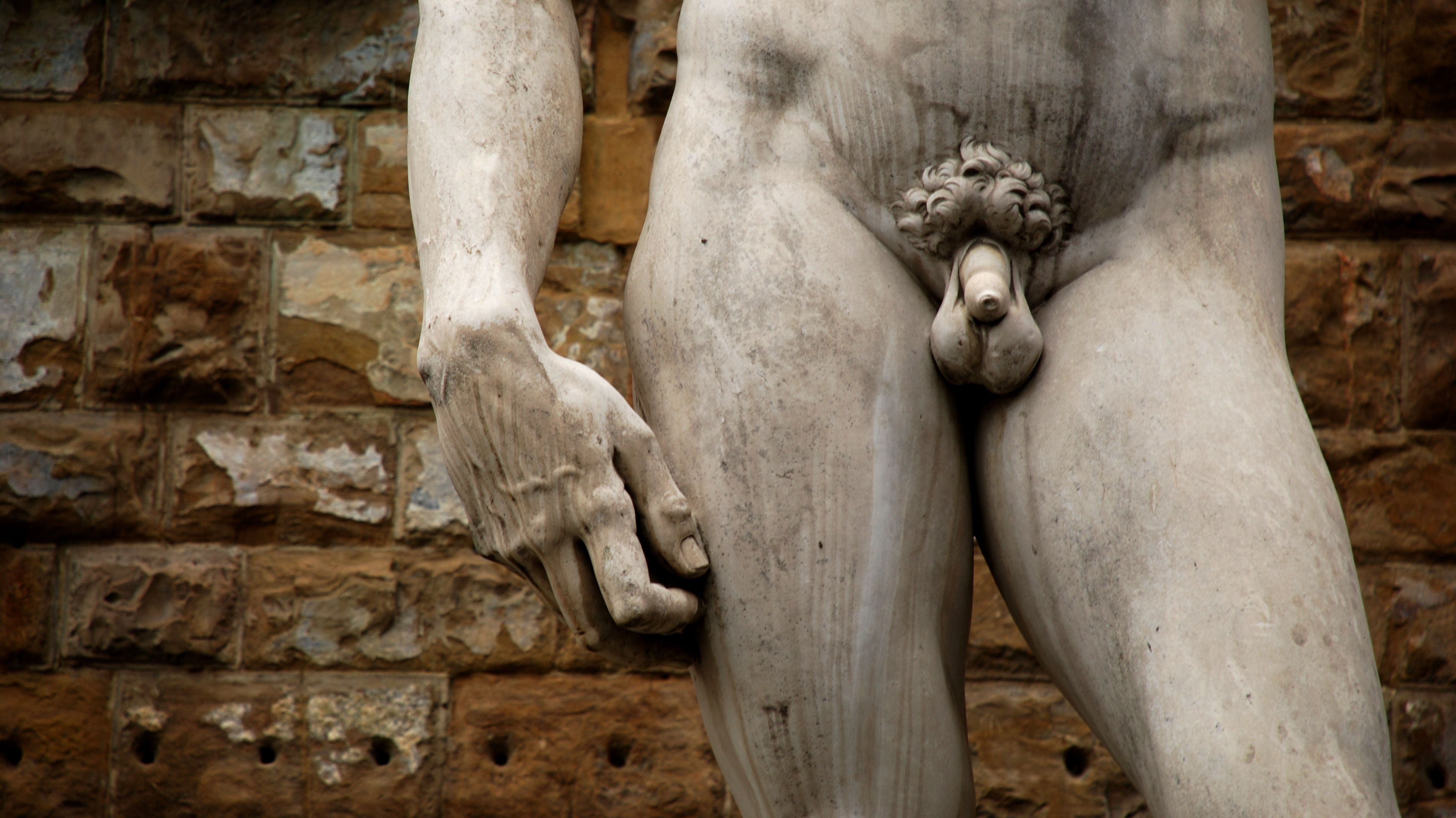12 Facts About the Penis | Mental Floss