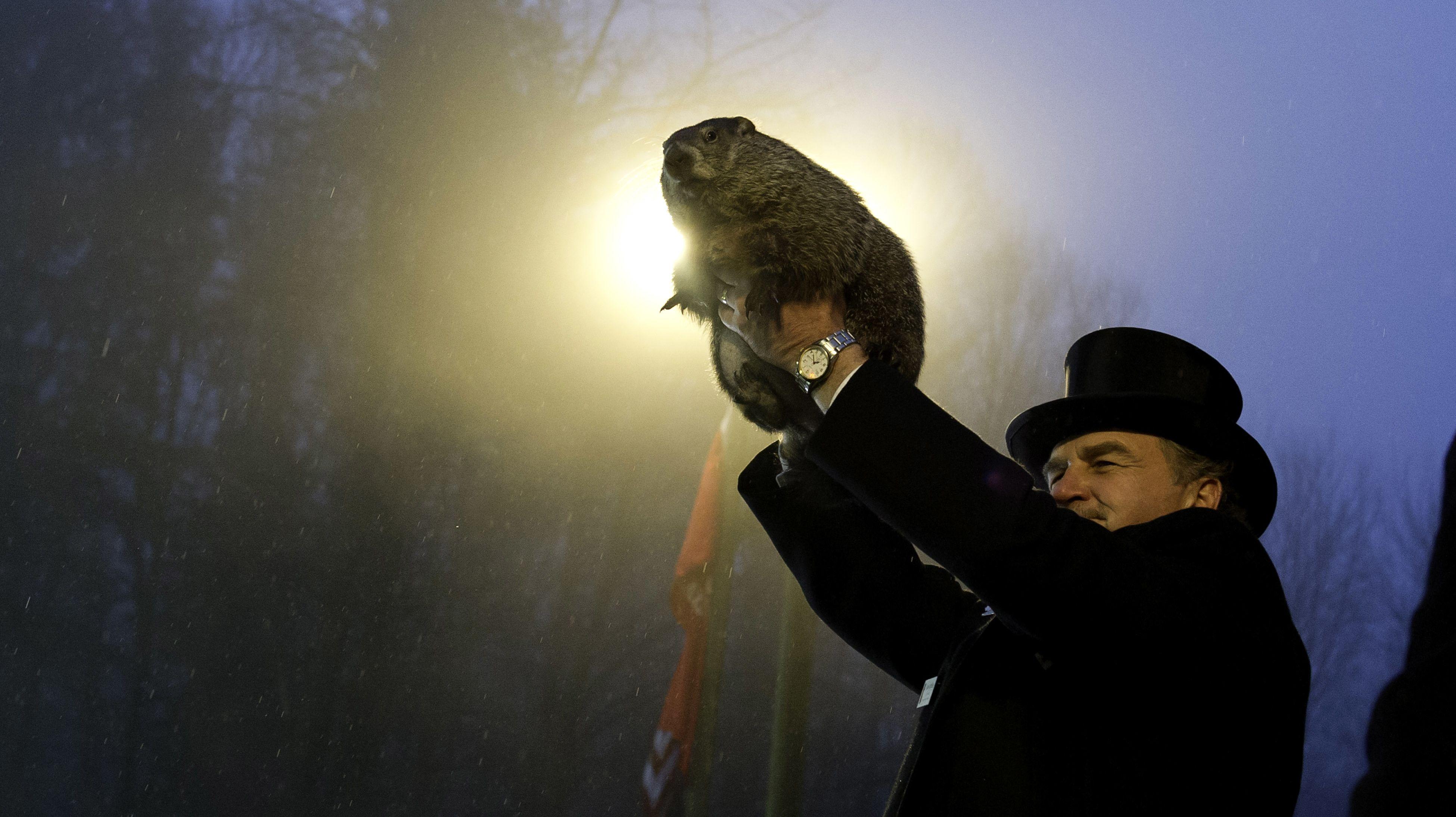 11 Punxsutawney Phil Facts for Groundhog Day | Mental Floss