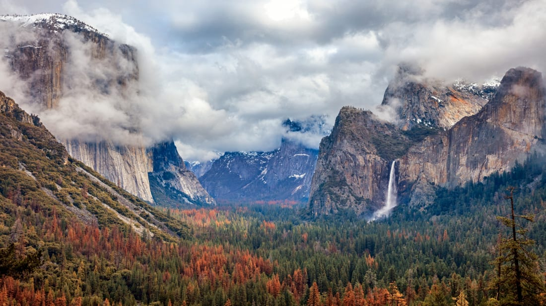 The National Park Service Is Streaming a Soothing Nature Soundtrack