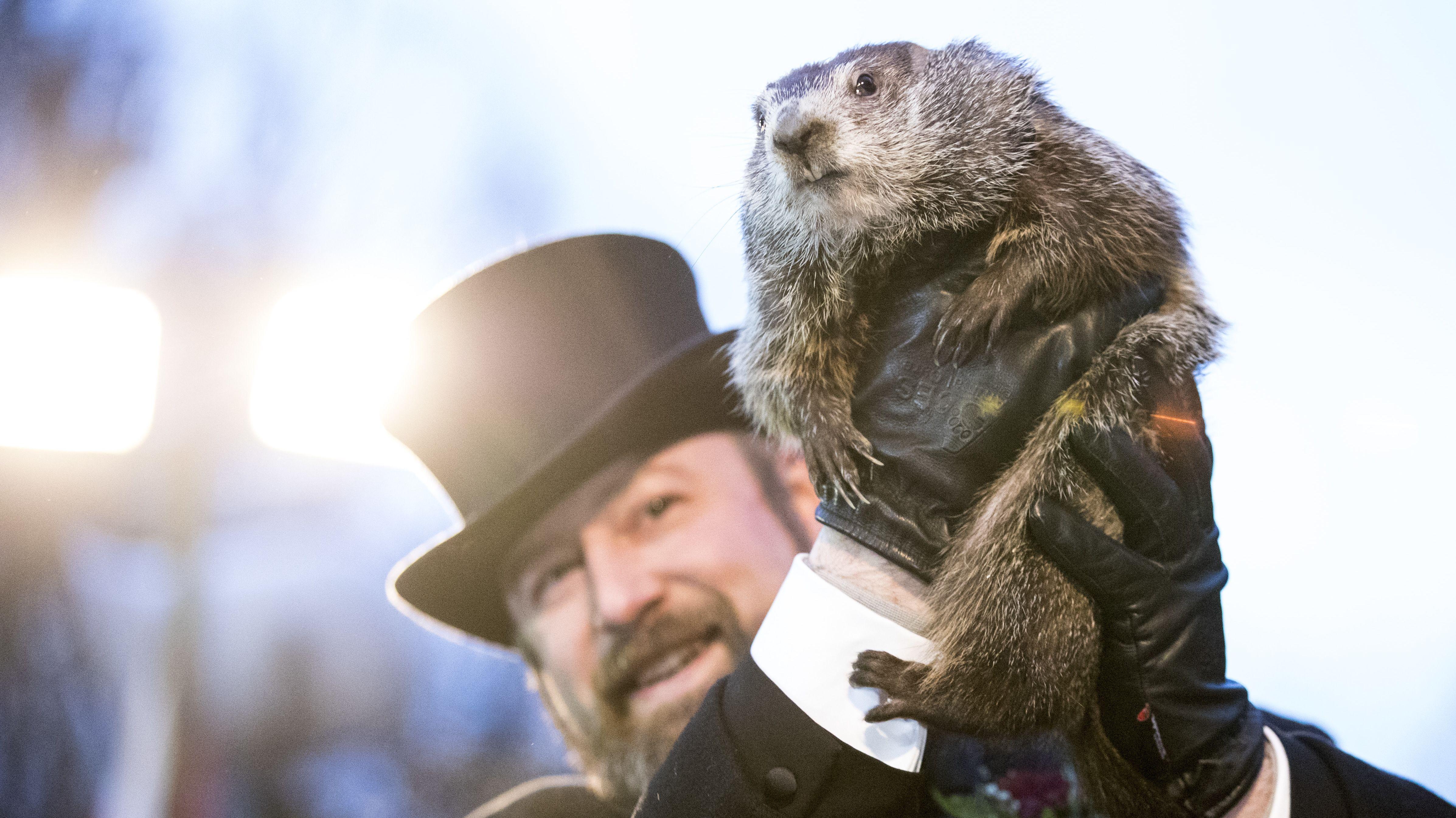 Why Is Punxsutawney's Groundhog Called Phil?