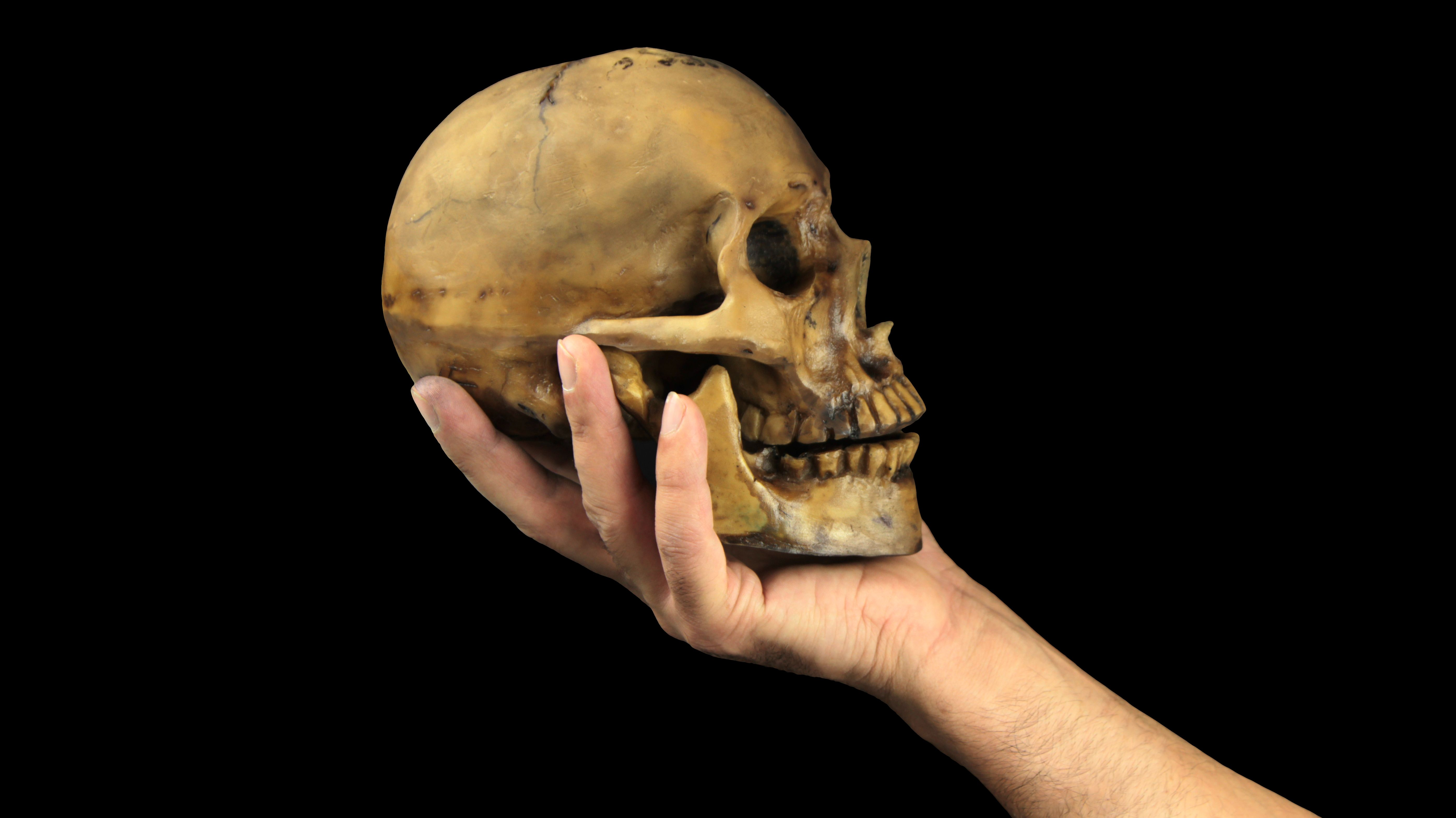 Here's Why You Can't Keep Your Loved One's Skull