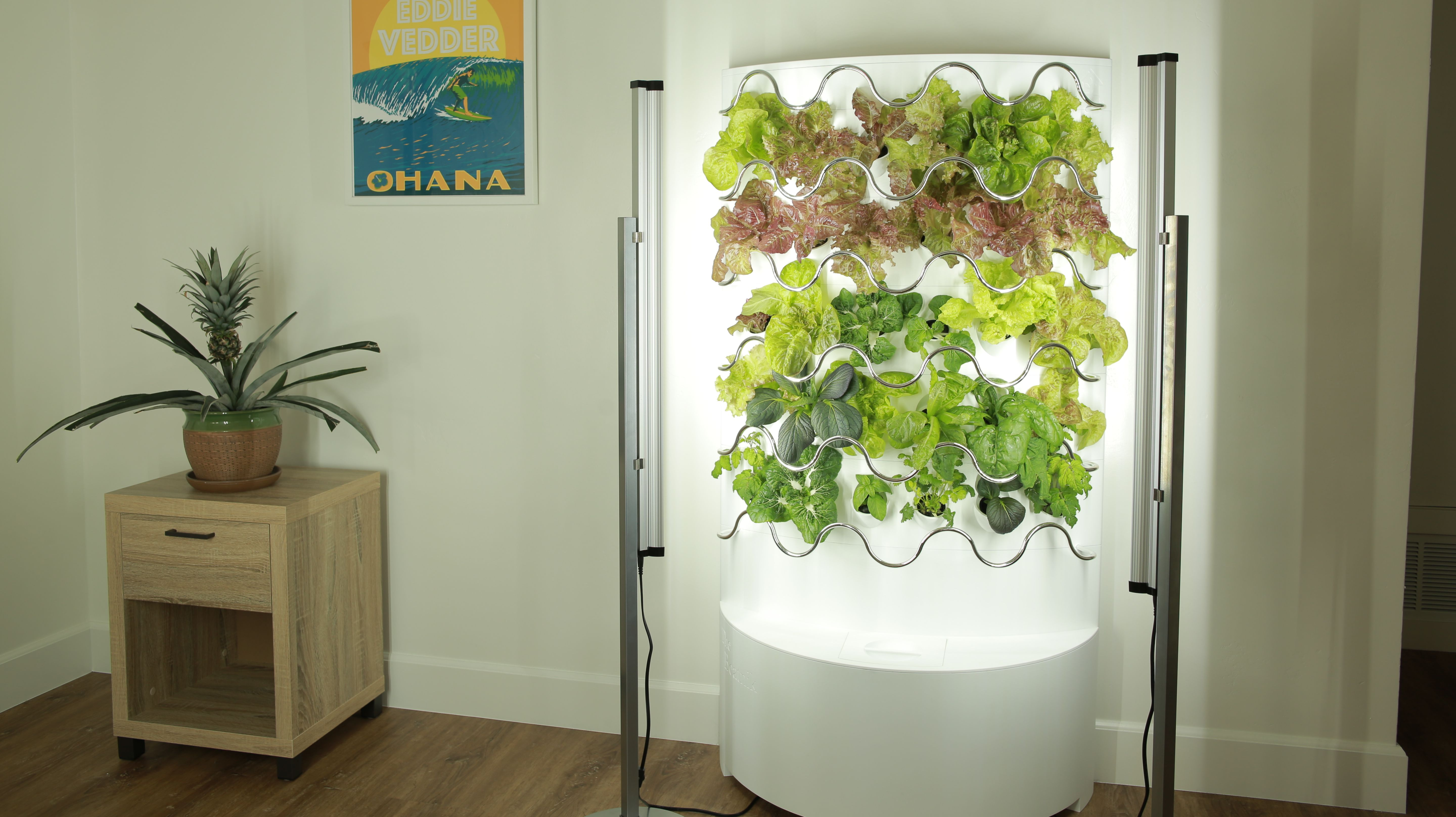 This Indoor Garden Grows Up to 30 Fruits and Vegetables With Little Maintenance Required