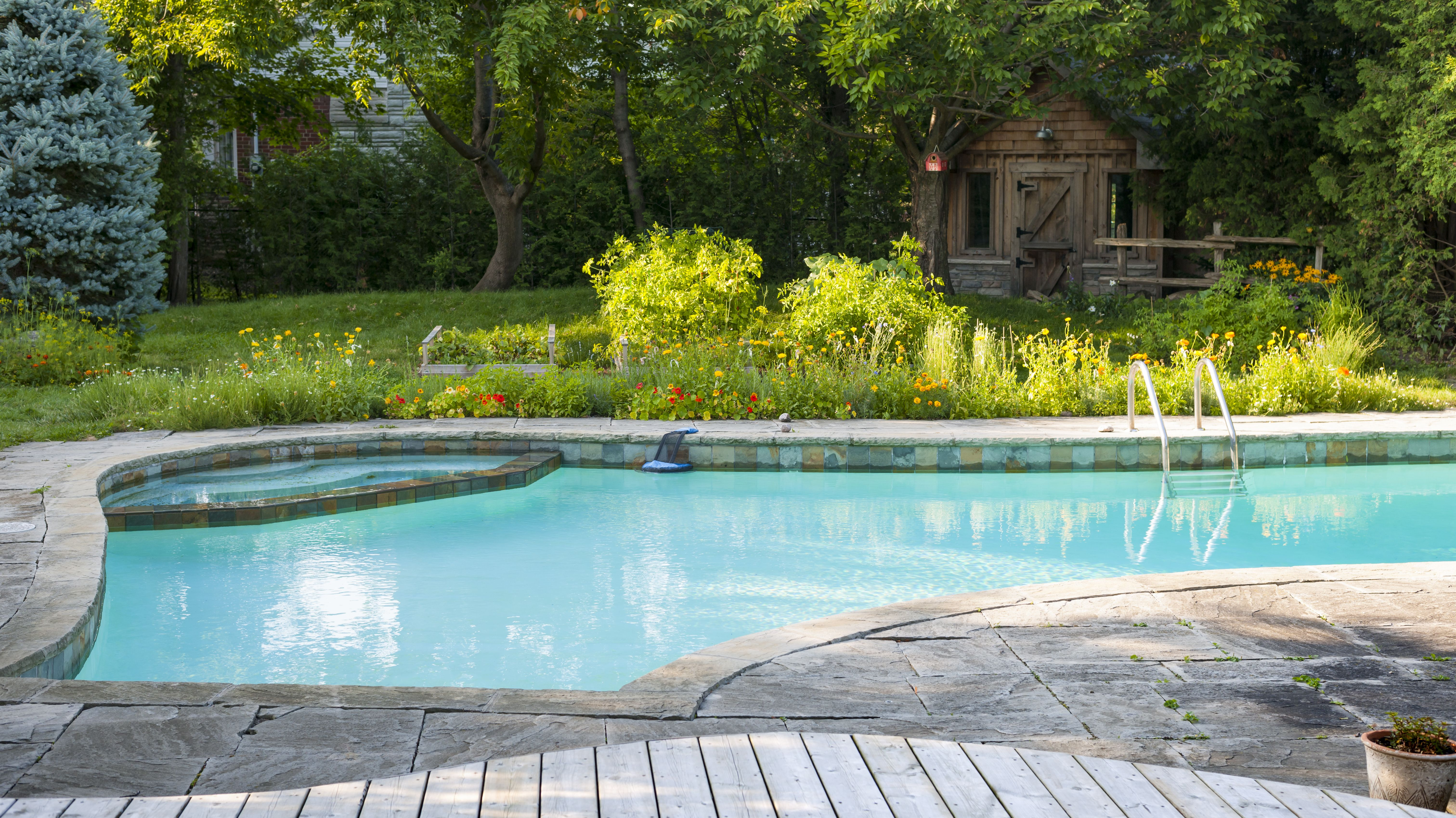 New Service Lets You Rent a Stranger\'s Swimming Pool for an ...