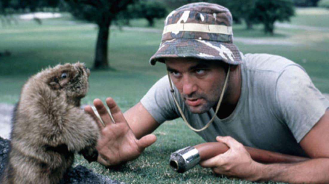 Bill Murray in Caddyshack (1980).