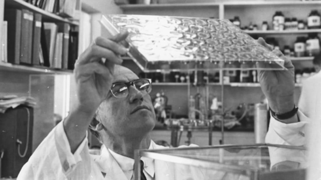 Jonas Salk works in his laboratory in 1957.