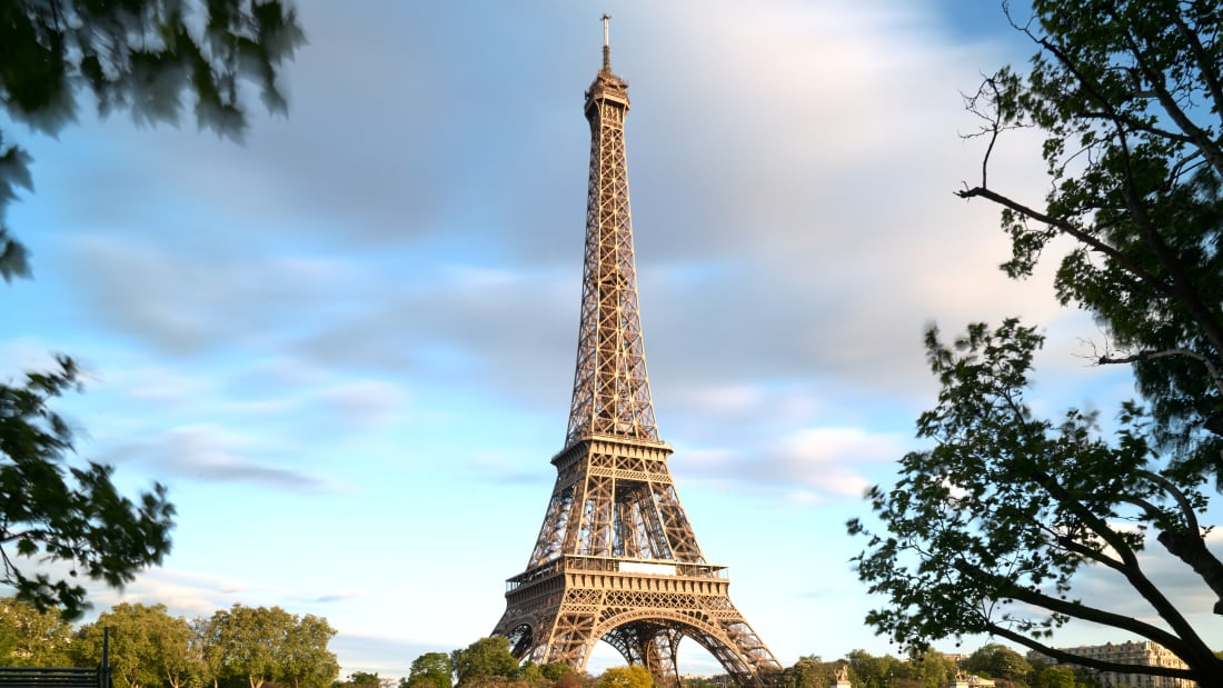The Eiffel Tower was involved in one of the most prominent non-human marriages.