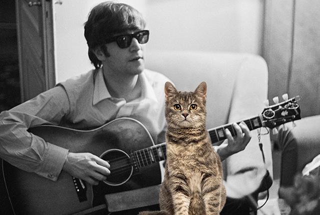 John Lennon Was a Crazy Cat Lady | Mental Floss