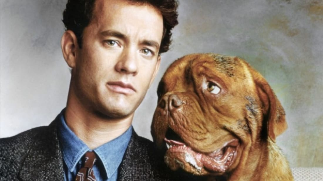 12 Fun Facts About Turner & Hooch | Mental Floss