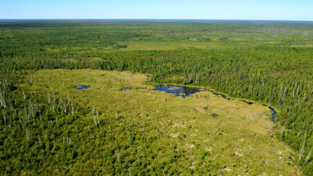 Photo Courtesy of Parks Canada
