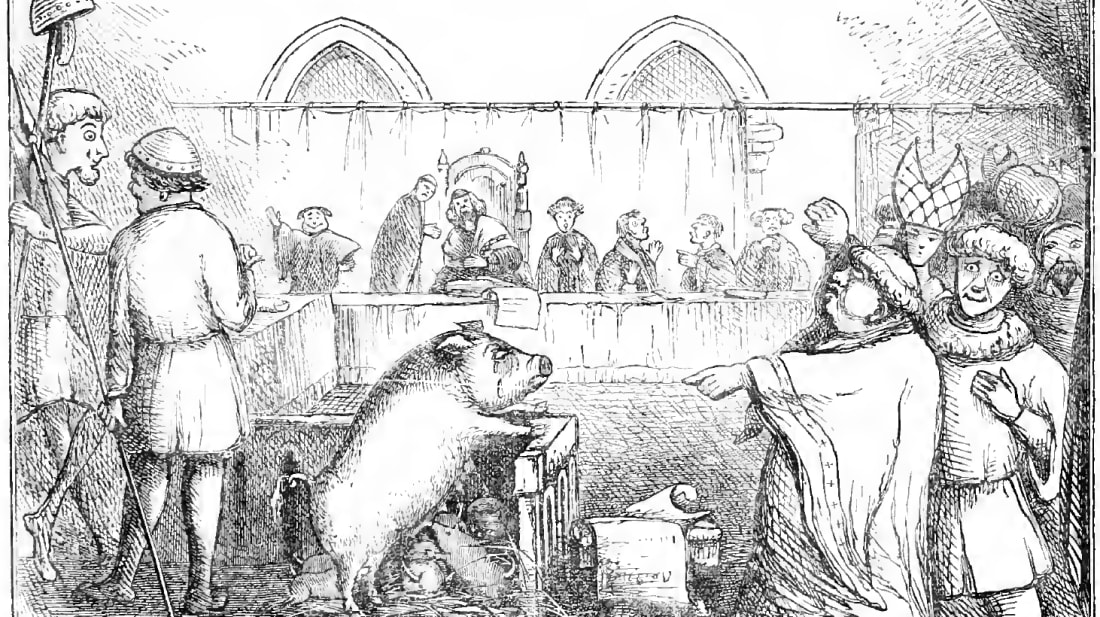 A pig is tried in France in 1457.