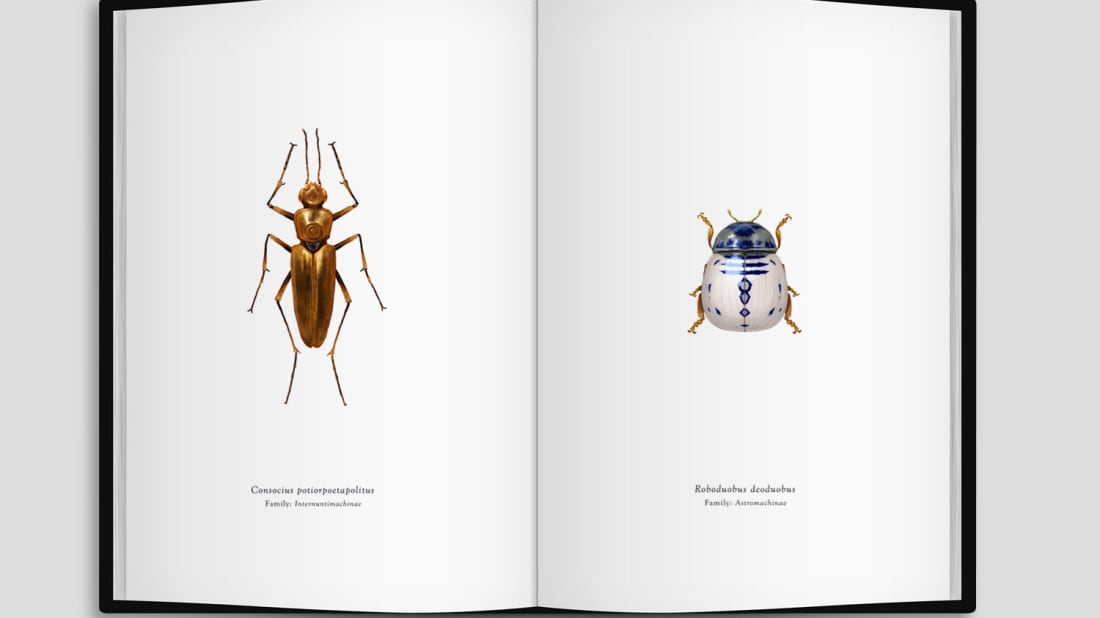 Collection of Star Wars-Inspired Insect Art Is Coming to Los Angeles Gallery