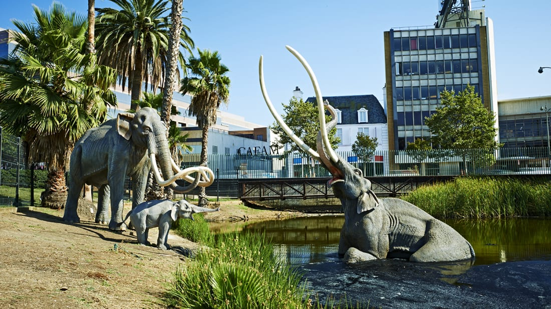 10 Fascinating Facts About the La Brea Tar Pits | Mental Floss