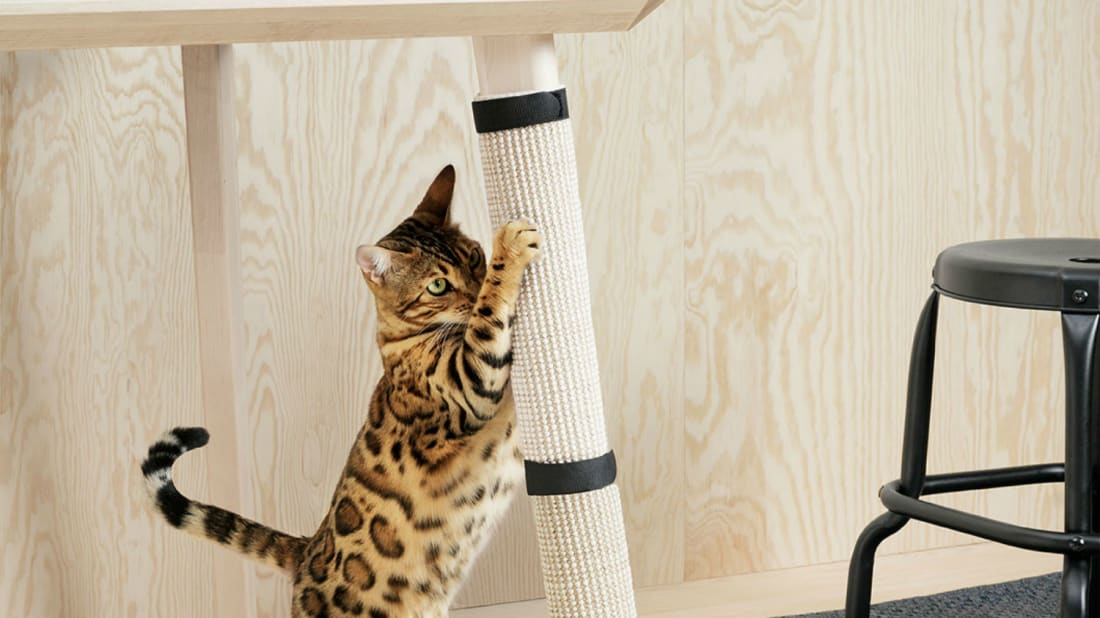 Get Ikea S New Pet Furniture Collection For Not A Lot Of Scratch