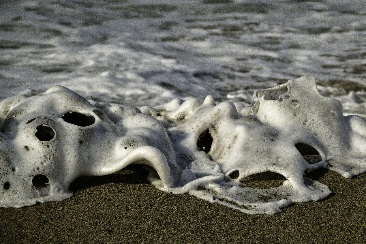 Unknown Creatures Found 2012