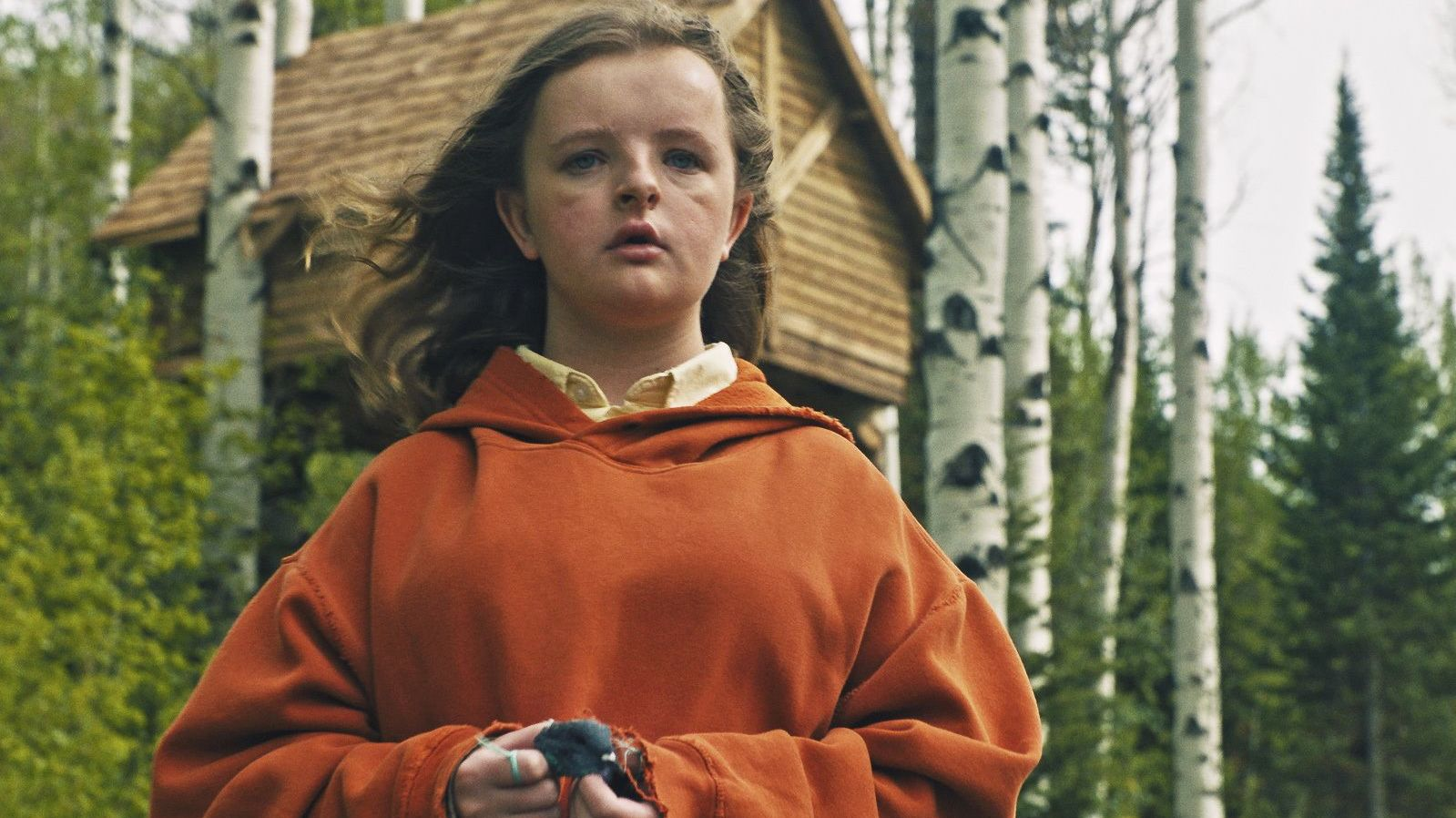 11 Memorable Facts About Hereditary