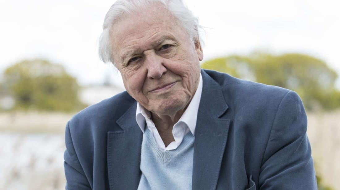 Sir David Attenborough attends the launch of the London Wildlife Trust's new flagship nature reserve Woodberry Wetlands on April 30, 2016 in London.