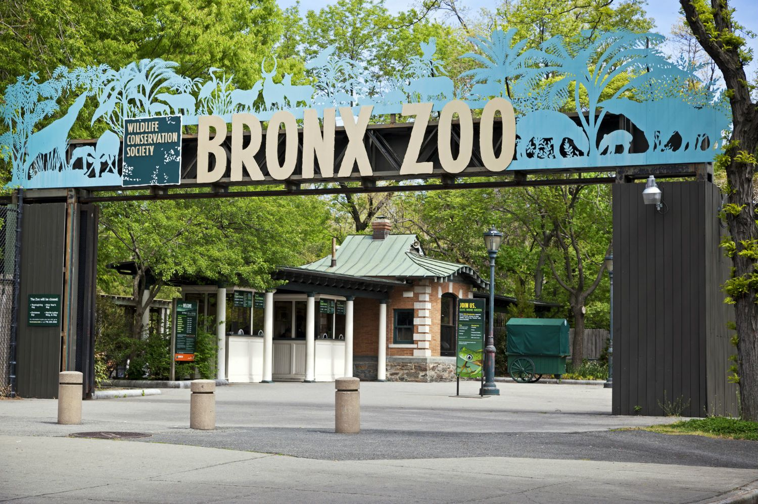 9 Wild Facts About the Bronx Zoo | Mental Floss