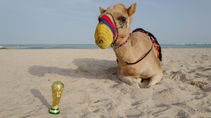 Se viene la Copa del Mundo de Qatar 2022.