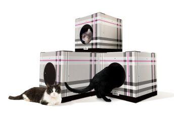 Cat Lovebox