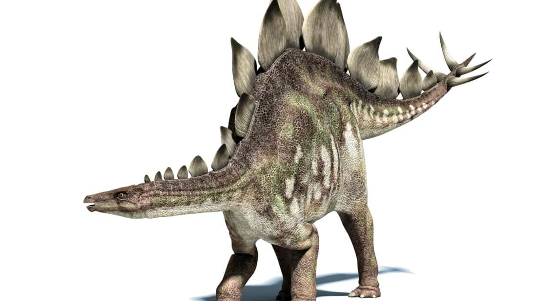 8 Official State Dinosaurs | Mental Floss