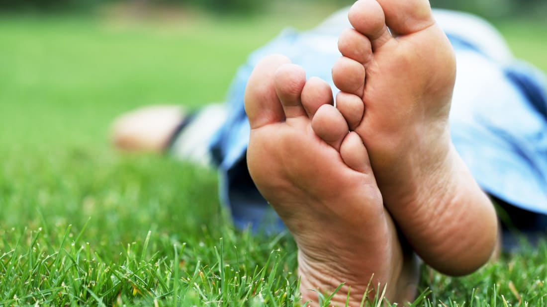 6f363b46752e 14 Facts About Feet
