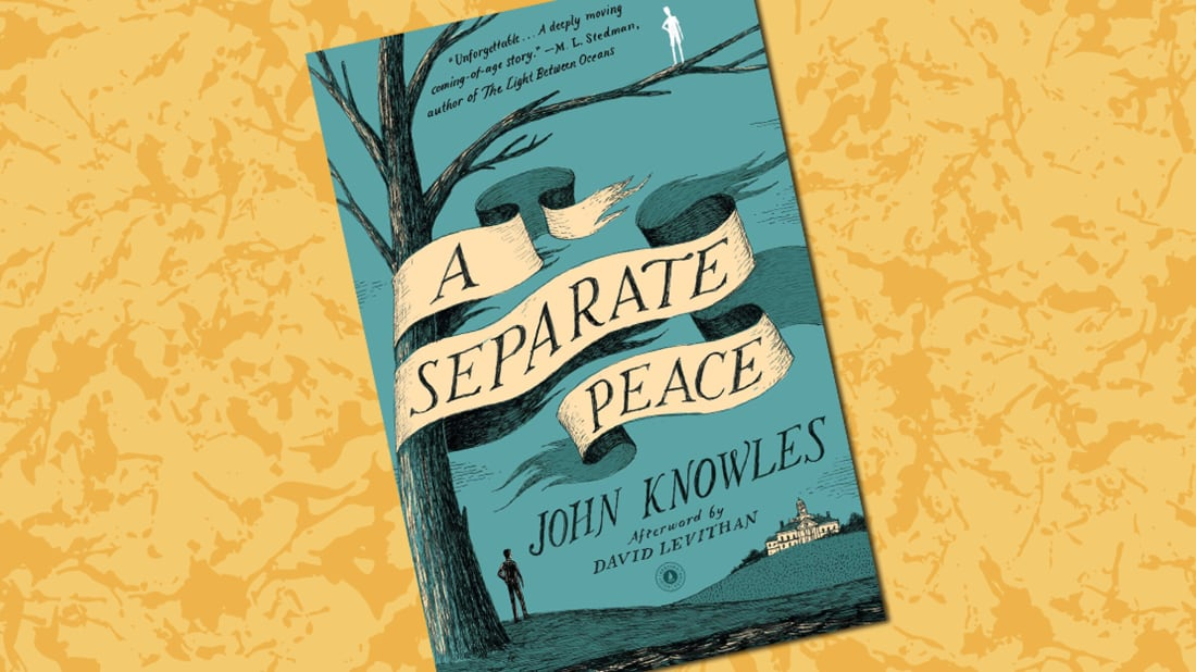 a separate peace book summary