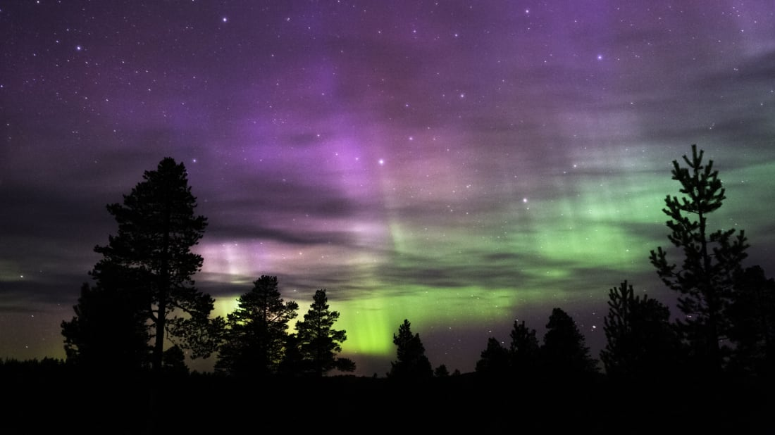 what time is the northern lights tonight