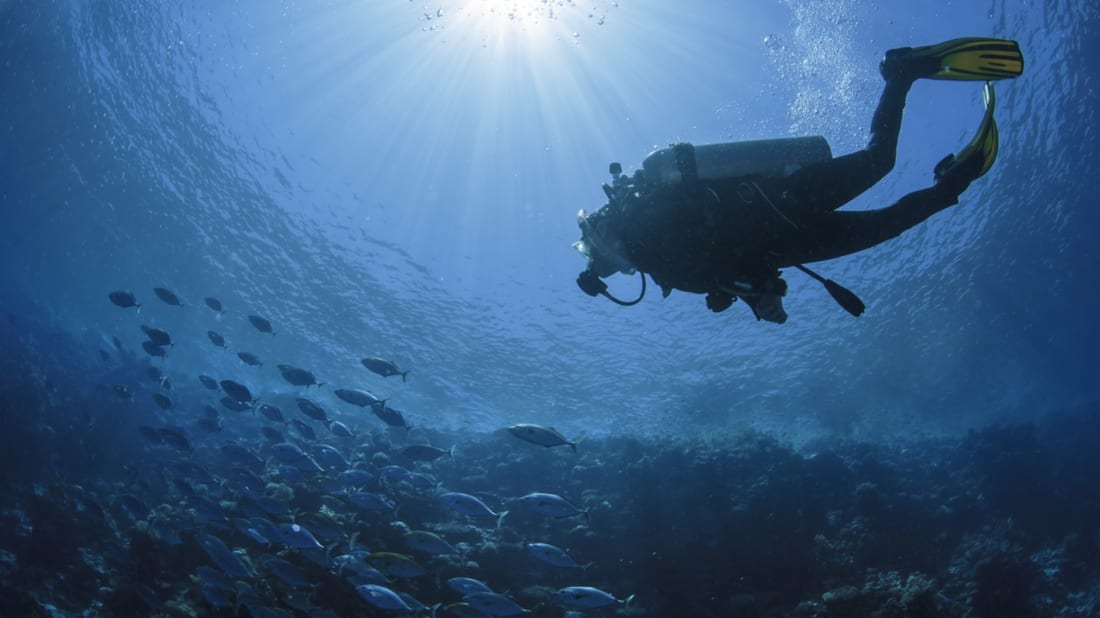 25 Things You Didn't Know About the World's Oceans | Mental Floss