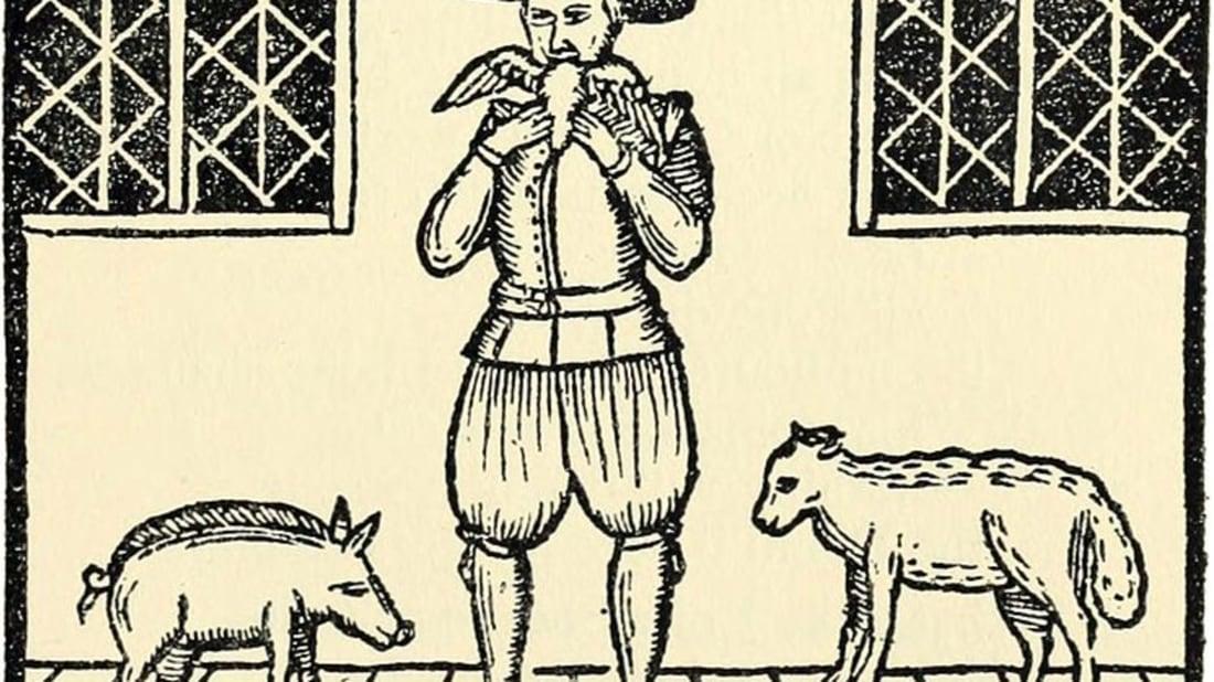 Racconish via Wikimedia Commons // Public Domain