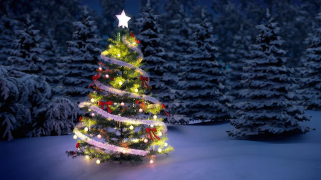 Origin Of Christmas.What Is The Origin Of The Christmas Tree Mental Floss