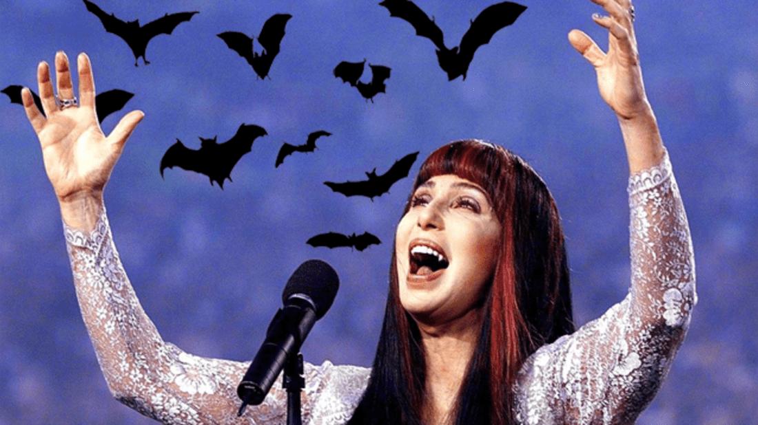 Getty (Cher) // iStock (bats)