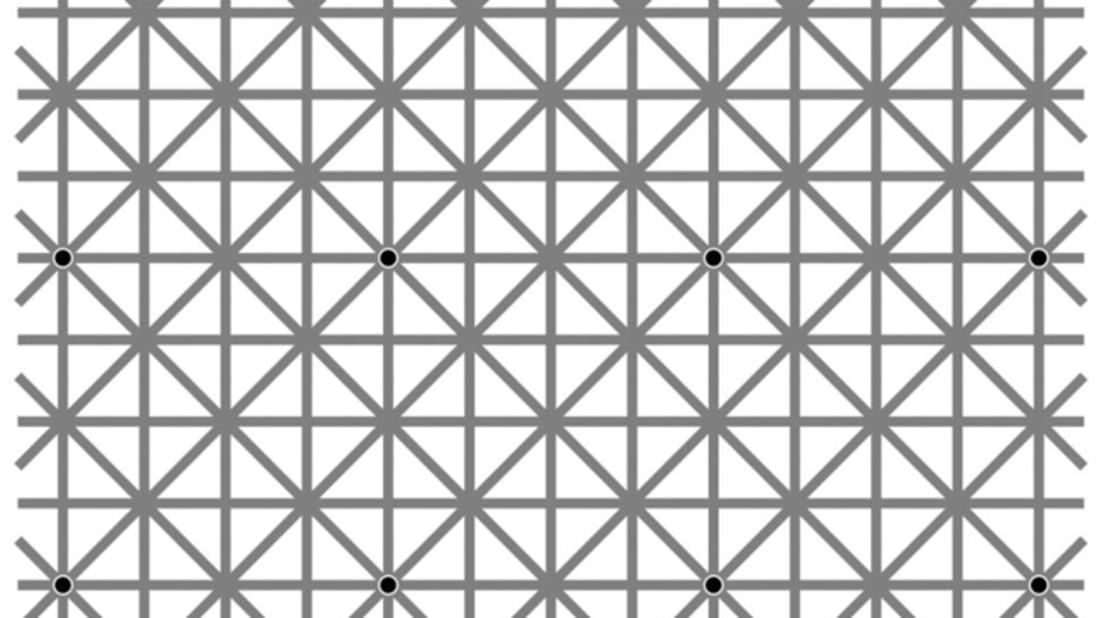 Ninio, J. and Stevens, K. A., Variations on the Hermann Grid: An Extinction Illusion // Facebook