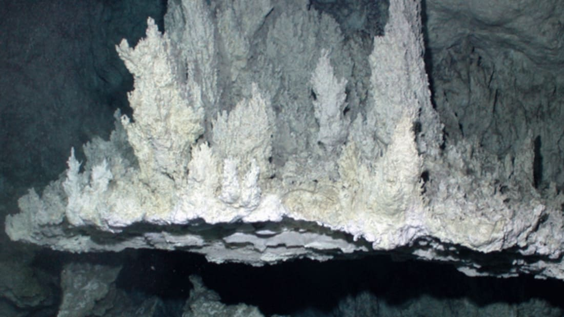 Lost City Hydrothermal Field. Image credit: NOAA