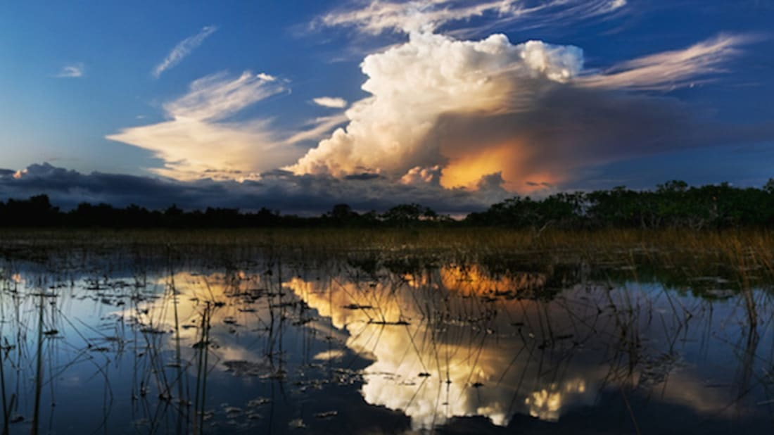Everglades NPS // Public Domain, Wikimedia Commons