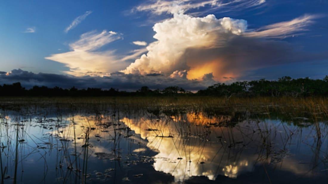Everglades NPS // Public Domain, Wikimedia Commons