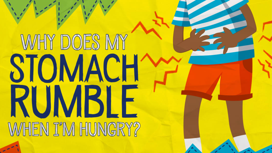 Why Does My Stomach Rumble When I'm Hungry? | Mental Floss