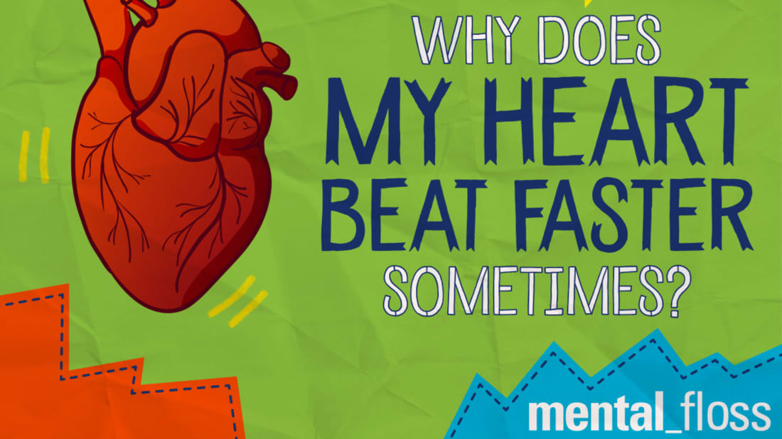 Why Does My Heart Beat Faster Sometimes? | Mental Floss