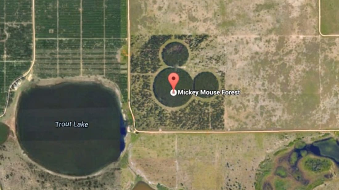 5 Hidden Representations of Mickey Mouse, Only Visible From the Air on