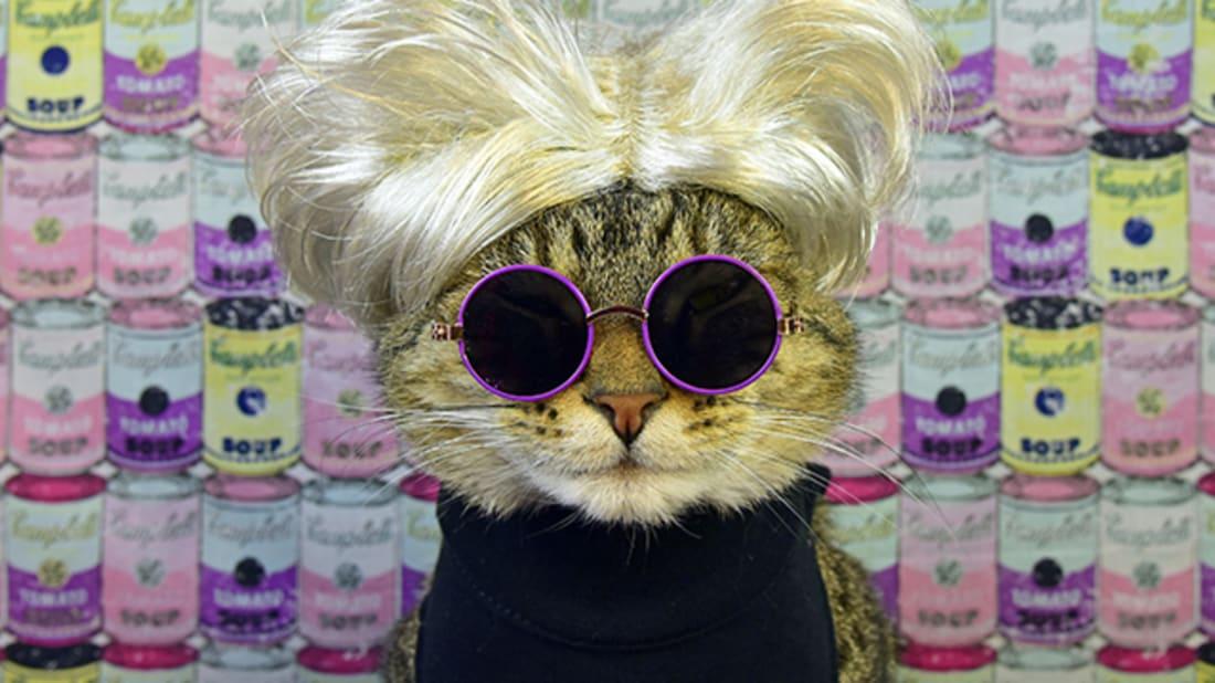 """""""Warhol Cat,"""" Paul Koudounaris"""