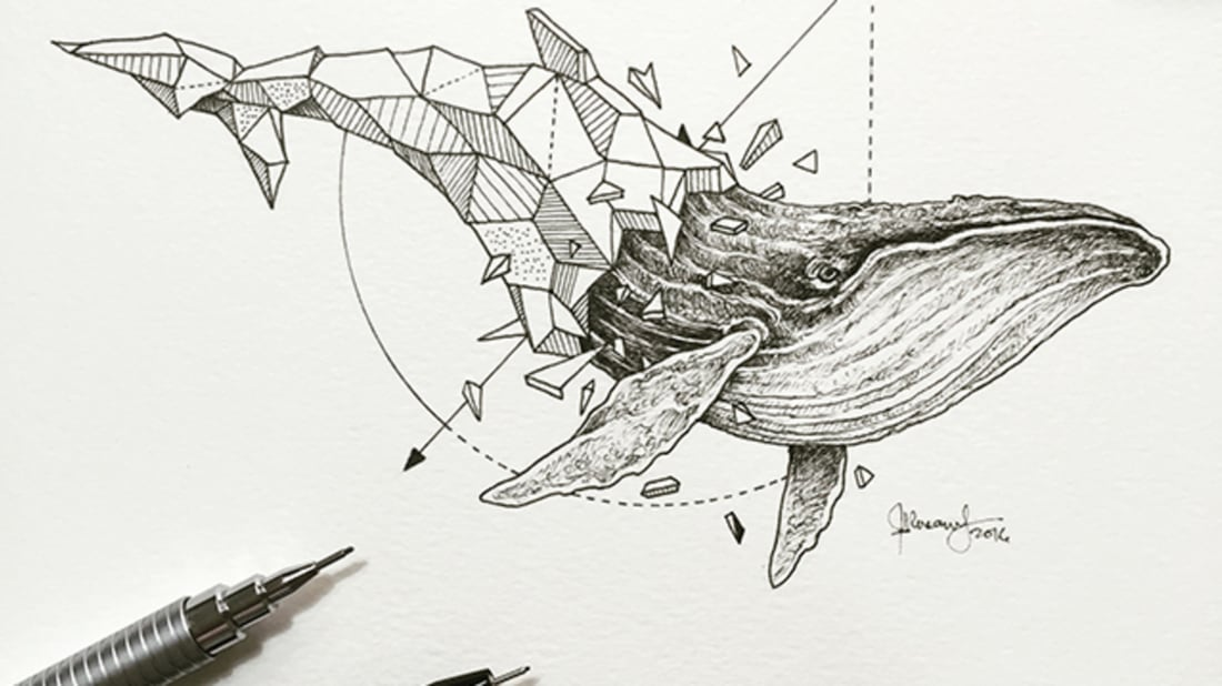 Artist Pairs Wildlife With Geometry to Create Stunning, Lively Drawings