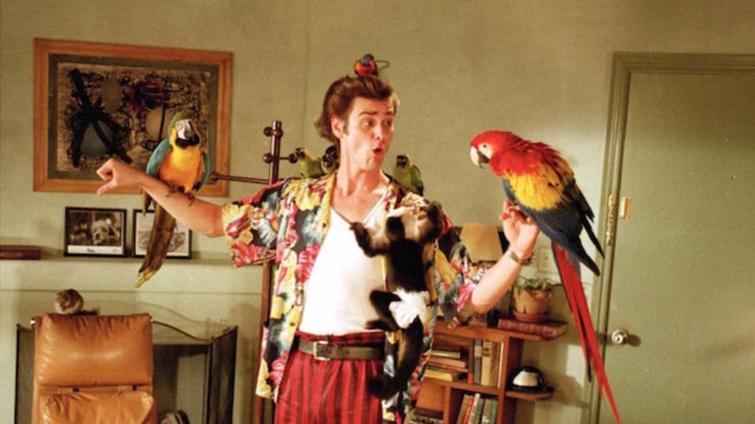 14 Alrighty Facts About Ace Ventura Pet Detective