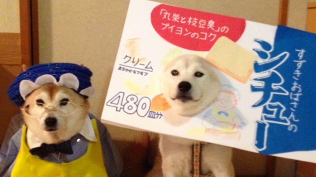 C_Suzuki, Twitter