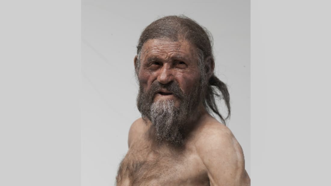 The Iceman (reconstruction by Adrie and Alfons Kennis). Image Credit: © South Tyrol Museum of Archaeology, Foto Ochsenreiter
