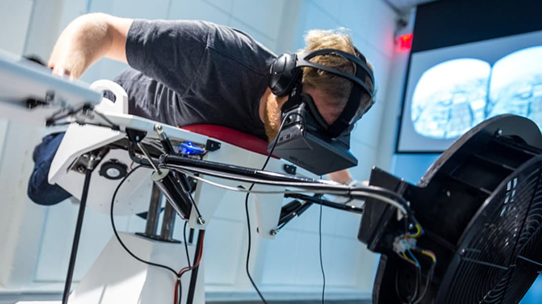 Fly Like a Bird in This Virtual Reality Flight Simulator