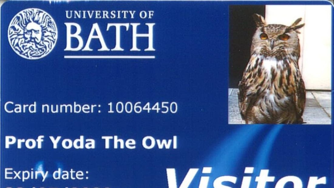 University of Bath on Twitter